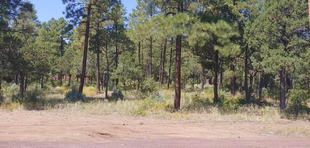 TBD Larson Road, Lakeside, AZ 85929 (MLS #231713) :: Walters Realty Group