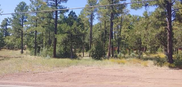 TBD Larson Road, Lakeside, AZ 85929 (MLS #231714) :: Walters Realty Group