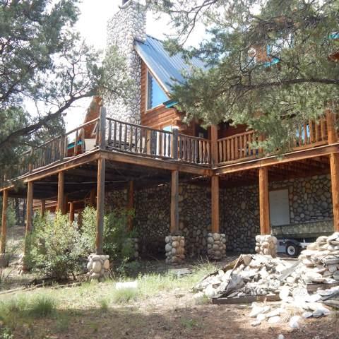 39 County Road N2173, Nutrioso, AZ 85932 (MLS #231775) :: Walters Realty Group