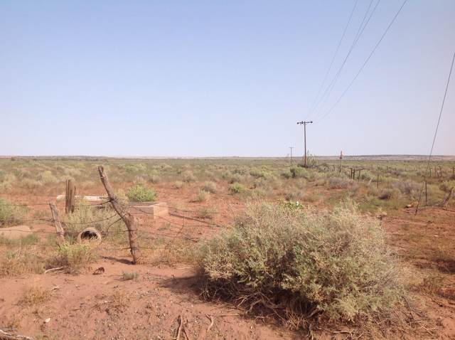 CR 5152 Highway 180, Concho, AZ 85924 (MLS #231884) :: Walters Realty Group