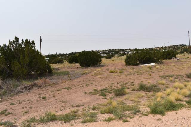 10 County Road 5040, Concho, AZ 85924 (MLS #231896) :: Walters Realty Group