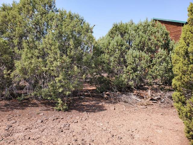 1840 Lone Pine Circle, Show Low, AZ 85901 (MLS #231929) :: Walters Realty Group