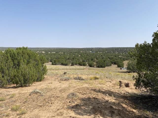 52 County Road 8245, Vernon, AZ 85940 (MLS #231947) :: Walters Realty Group