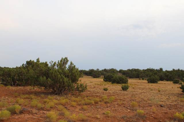2517 Jay Road, White Mountain Lake, AZ 85912 (MLS #232078) :: Walters Realty Group