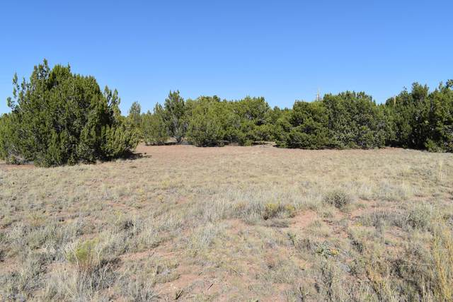 35 County Road 5097, Concho, AZ 85924 (MLS #232103) :: Walters Realty Group