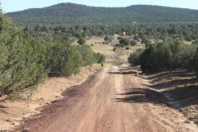 31 County Road 3049, Concho, AZ 85924 (MLS #232139) :: Walters Realty Group
