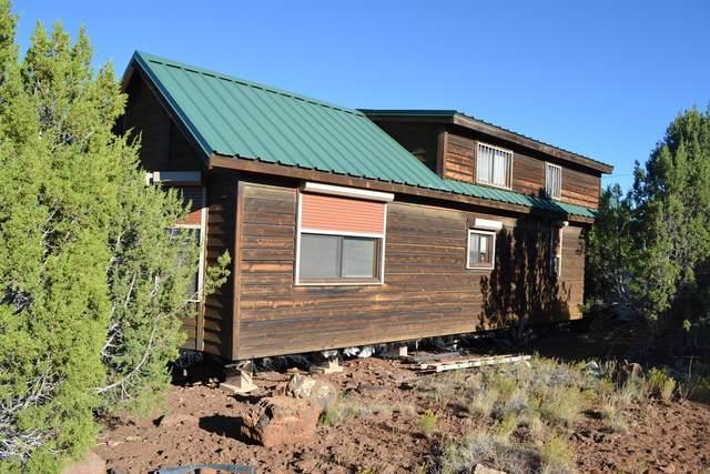 39 County Road 8248, Concho, AZ 85924 (MLS #232141) :: Walters Realty Group