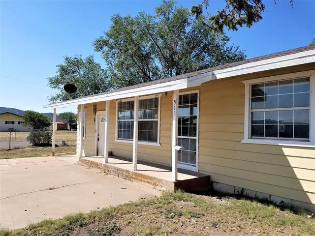 515 Thunderbird Drive, Springerville, AZ 85938 (MLS #232190) :: Walters Realty Group