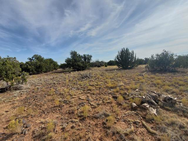 TBD Off Shumway Road, Show Low, AZ 85901 (MLS #232326) :: Walters Realty Group