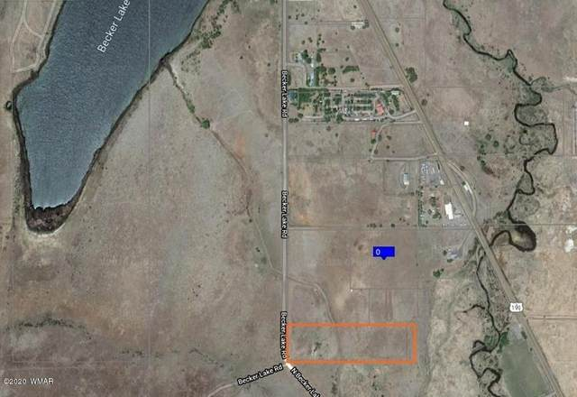 XXX Becker Lake Road, Springerville, AZ 85938 (MLS #232434) :: Walters Realty Group