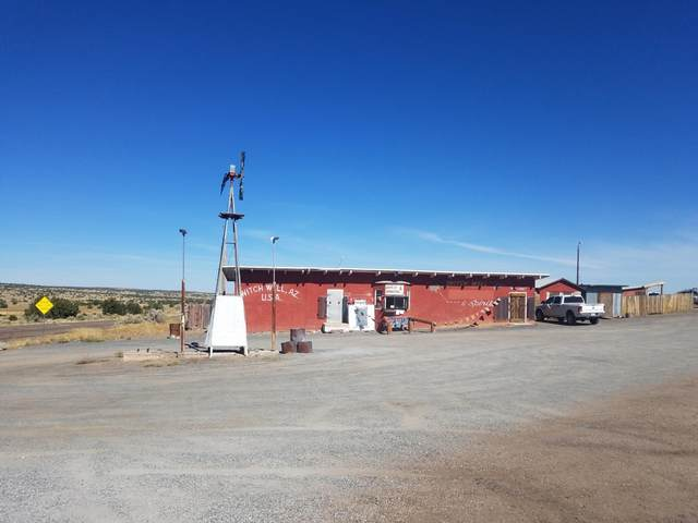 3000 Hwy 191, Witch Well, AZ 85936 (MLS #232521) :: Walters Realty Group