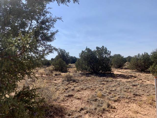 3534 Bum Heel Ranch Road, Snowflake, AZ 85937 (MLS #232594) :: Walters Realty Group