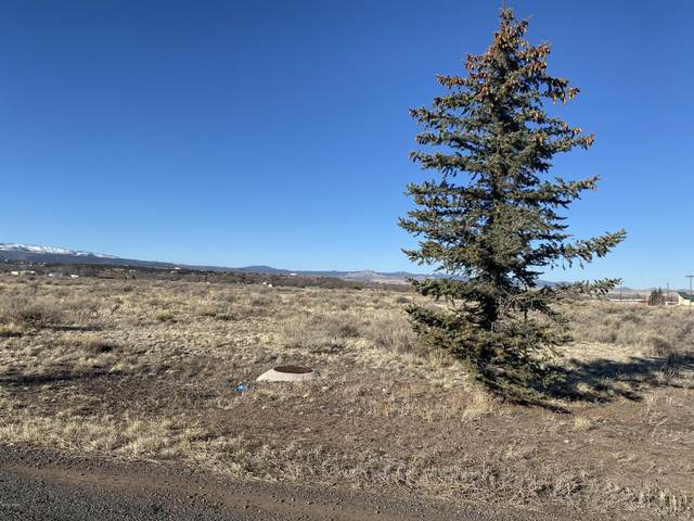 TBD E Highway 60, Springerville, AZ 85938 (MLS #232635) :: Walters Realty Group