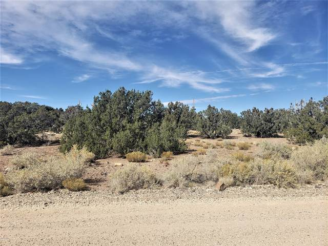 75 County Road 5064, Concho Valley, AZ 85924 (MLS #232680) :: Walters Realty Group