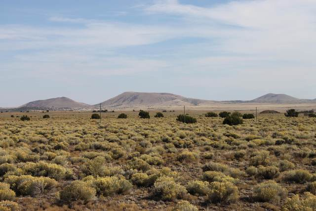 181 County Road 3000, Concho, AZ 85924 (MLS #232709) :: Walters Realty Group