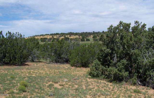 TBD County Rd 8052, Concho, AZ 85924 (MLS #232728) :: Walters Realty Group