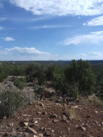 28 County Road 8301 Lot# 451, Concho, AZ 85924 (MLS #232777) :: Walters Realty Group