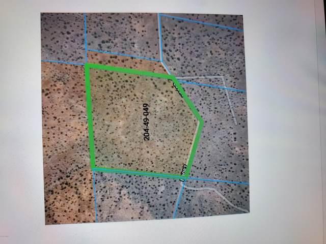 51 N9087, Concho, AZ 85924 (MLS #232802) :: Walters Realty Group
