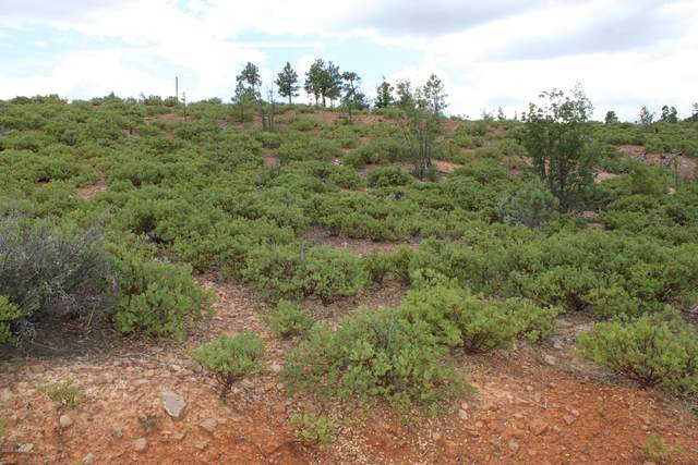 839 Wilderness Trail Lot 296, Show Low, AZ 85901 (MLS #232827) :: Walters Realty Group