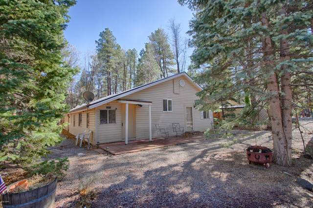 4313 Racoon Court, Pinetop, AZ 85935 (MLS #232841) :: Walters Realty Group
