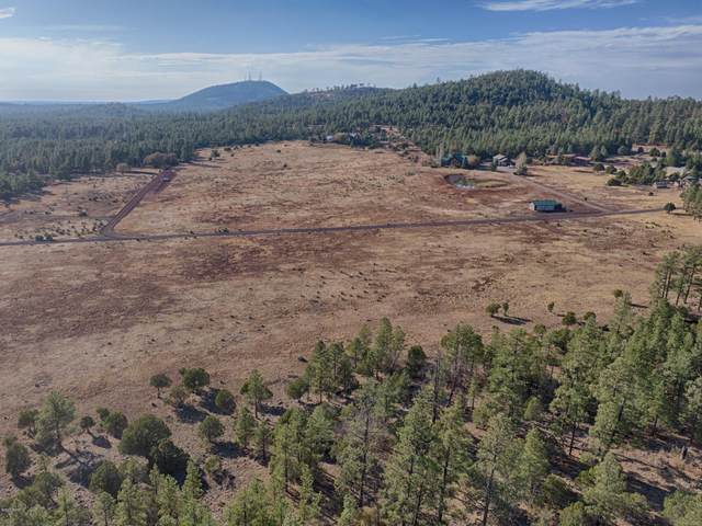 TBD 10 ACR Mountain View Ranch Road, Lakeside, AZ 85929 (MLS #232881) :: Walters Realty Group