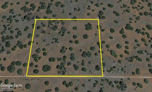 81 County Road 8059, Concho, AZ 85924 (MLS #232887) :: Walters Realty Group