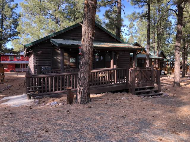 2718 High Pine Loop, Overgaard, AZ 85933 (MLS #232901) :: Walters Realty Group