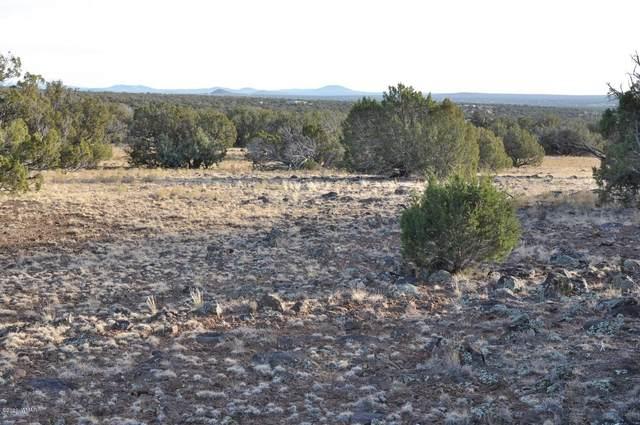 12K Maverick, White Mountain Lake, AZ 85912 (MLS #232902) :: Walters Realty Group