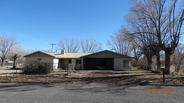 110 S Cochise Street, Springerville, AZ 85938 (MLS #232932) :: Walters Realty Group
