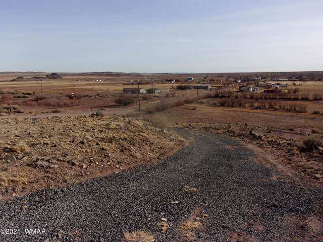 tbd Country 80 Acres Road, Woodruff, AZ 85942 (MLS #233591) :: Walters Realty Group