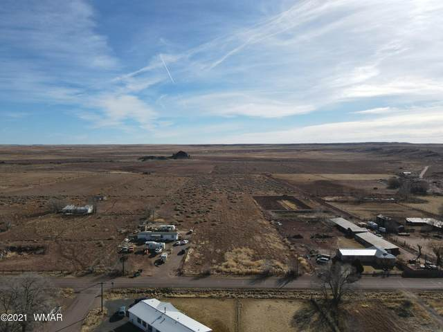 TBD Country Road, Woodruff, AZ 85942 (MLS #233868) :: Walters Realty Group