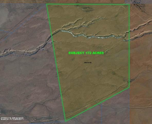 000 N 172 Acres Near Hwy 191 #1, St. Johns, AZ 85936 (MLS #233956) :: Walters Realty Group