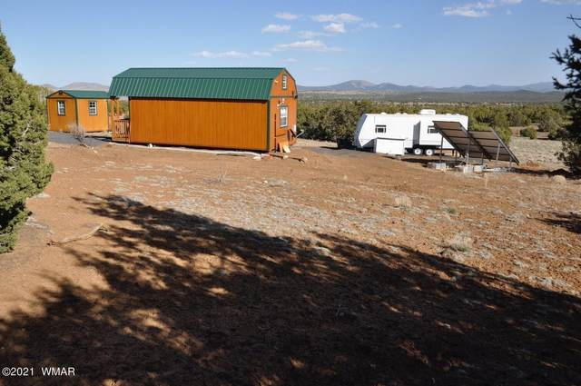 64 County Road 8025, Concho, AZ 85924 (MLS #234674) :: Walters Realty Group