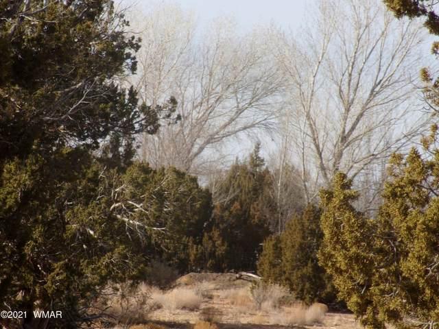 2606 Parson #C Lane, Shumway, AZ 85901 (MLS #234691) :: Walters Realty Group