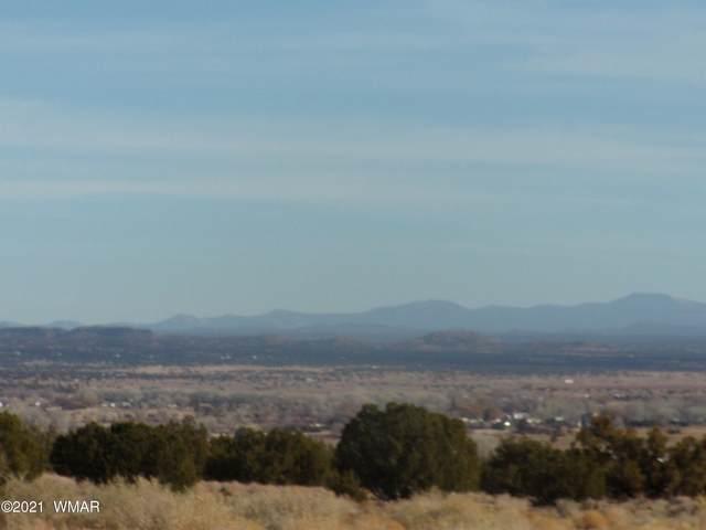 3076 Cr Lot #C, Vernon, AZ 85940 (MLS #234708) :: Walters Realty Group