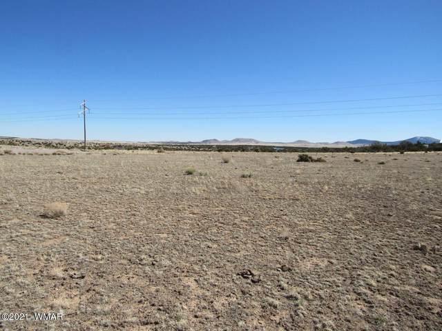 24-Lot 127B County Road N3611, Concho, AZ 85924 (MLS #235024) :: Walters Realty Group