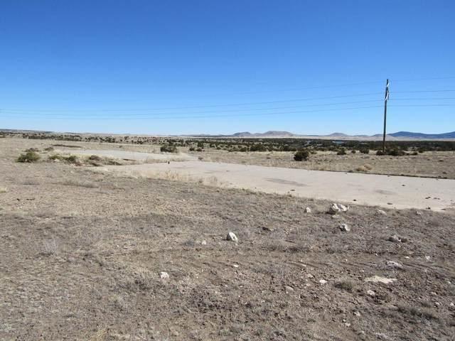 24-Lot 127B County Road N3611, Concho, AZ 85924 (MLS #235027) :: Walters Realty Group