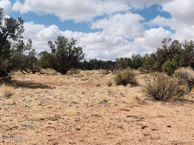 TBD Pine Or Crazy Eight Ranch Road, Snowflake, AZ 85937 (MLS #235041) :: Walters Realty Group