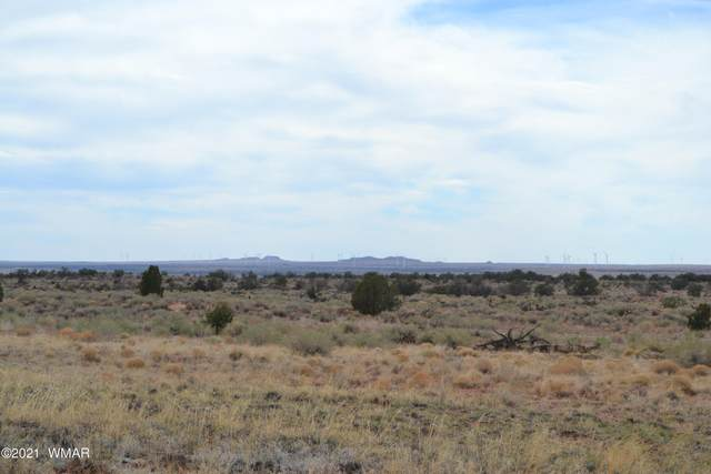 8190 Rockin R Ranch Trail, Snowflake, AZ 85937 (MLS #235090) :: Walters Realty Group