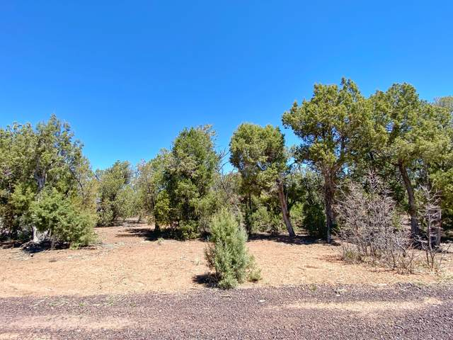 TBD Tosca Place, Pinedale, AZ 85934 (MLS #235102) :: Walters Realty Group