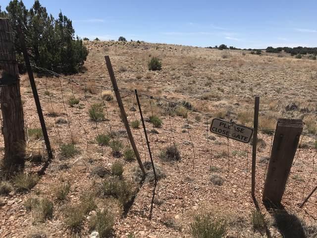 TBD E Concho Highway, Snowflake, AZ 85937 (MLS #235195) :: Walters Realty Group