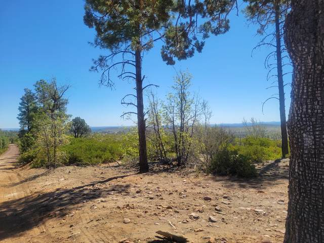 TBD Off Timberland Acres, Linden, AZ 85901 (MLS #235305) :: Walters Realty Group