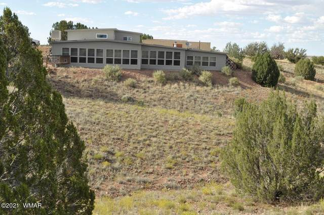 10 N9142, Concho, AZ 85924 (MLS #235314) :: Walters Realty Group