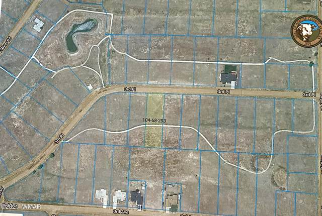 00 Lot 114 River Run Estates, Eagar, AZ 85925 (MLS #235318) :: Walters Realty Group