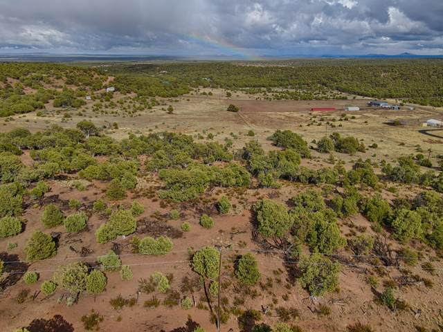 1617 Williams Lane, Show Low, AZ 85901 (MLS #235321) :: Walters Realty Group