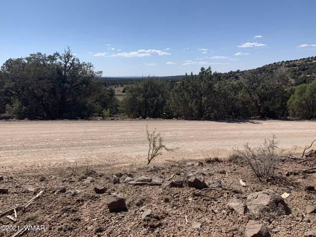 Show Low Pines Unit 8 Lot 314, Concho, AZ 85924 (MLS #235342) :: Walters Realty Group