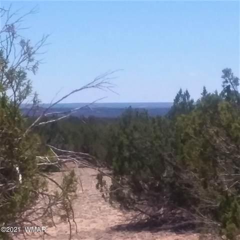 Lot 220-CR N7329 Sierra Mountain Ranch, St. Johns, AZ 85936 (MLS #235344) :: Walters Realty Group