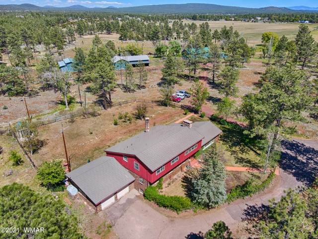 4018 State Route 260, Lakeside, AZ 85929 (MLS #235557) :: Walters Realty Group