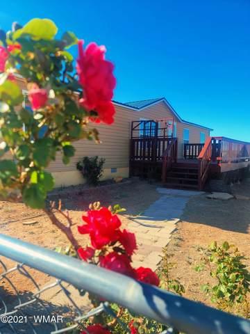 502 Foothills Boulevard, Taylor, AZ 85939 (MLS #235621) :: Walters Realty Group