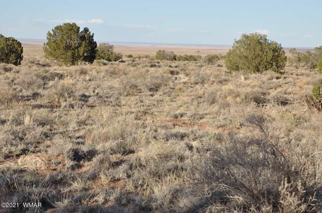 5520 White Antelope Road, Snowflake, AZ 85937 (MLS #235623) :: Walters Realty Group